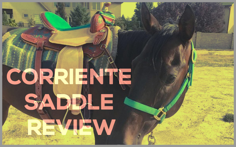 CORRIENTE SADDLE REVIEW
